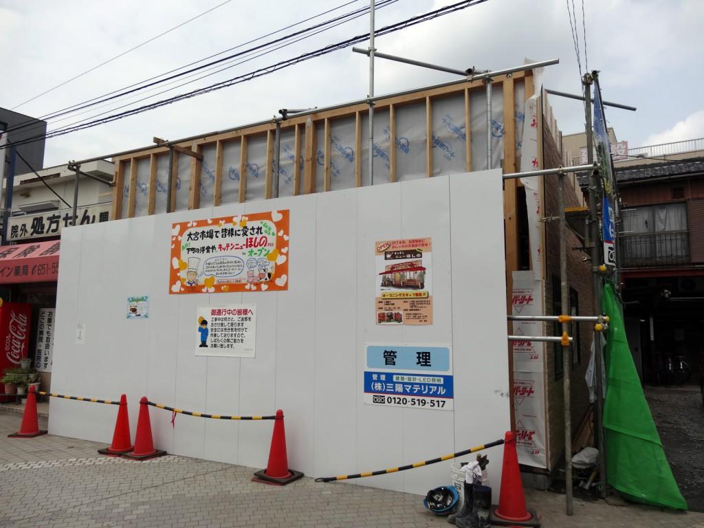 Hoshino20130914
